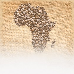 African Coffee Sampler