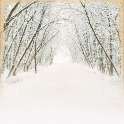 Cold Winter Days, Gift Set