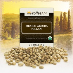 Organic Mexico 'Altura Tollan' Green Coffee