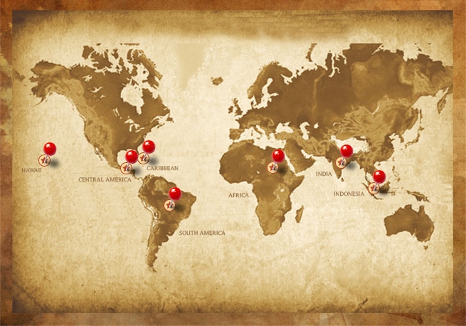 Coffees from All Over the World!
